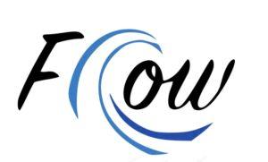 Flow Logo Slalomboote